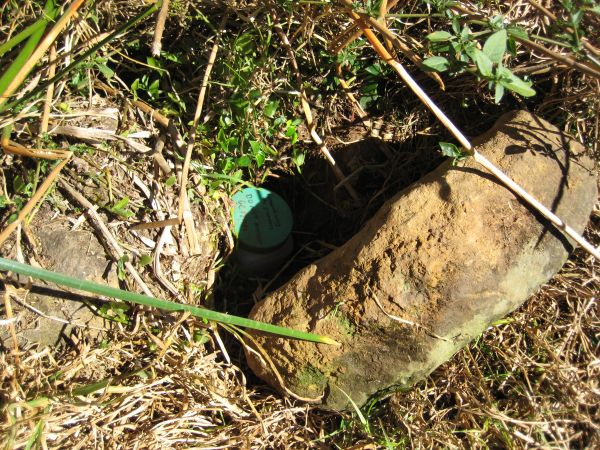 tope of a cache container visible under a rock