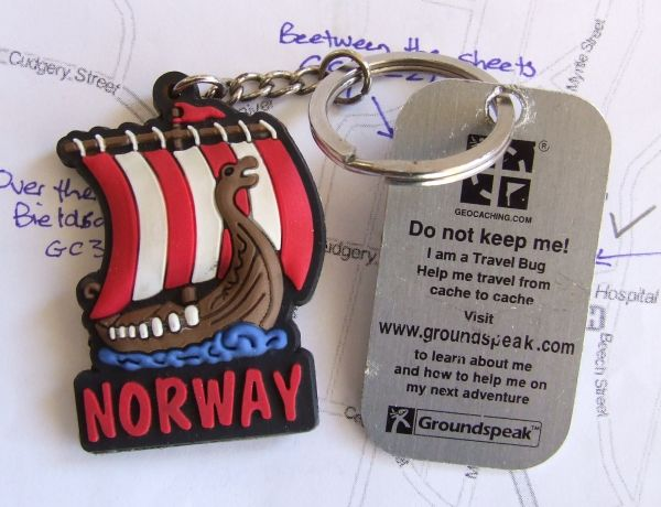 Travel bug on a key ring