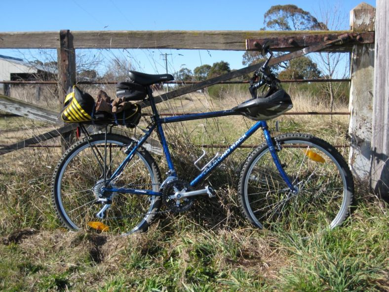 bicycle leaning on a fence